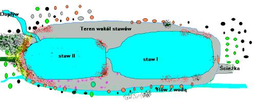 Mapa roślinności